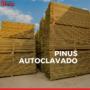 Conheça 3 vantagens do Pinus Autoclavado